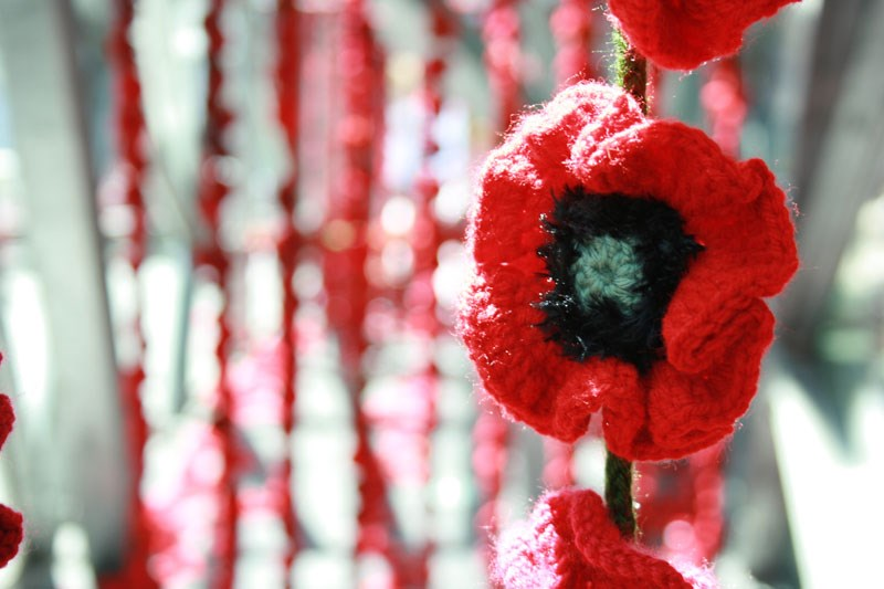 5000 Poppies Workshop at Whittlesea Library